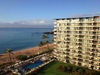 Oceanview Condo in Maui for rent in January 2016