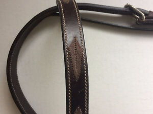 NEW: Horse-sized Headstall & Bit combo