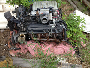 5.0 liter 302 ford engine