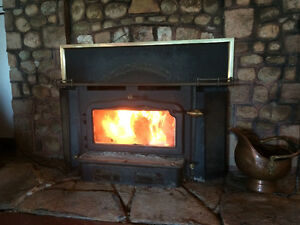 Fireplace insert Kawartha Lakes Peterborough Area image 1