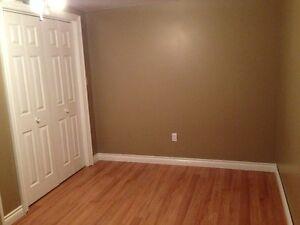 Tillsonburg Room rental in quiet subdivision London Ontario image 10