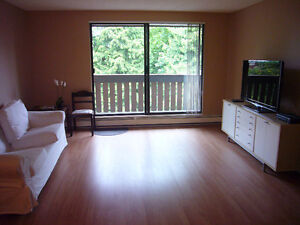Furnished Richmond Centre 2 bedroom Top Floor Condo for rent