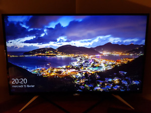 Moniteur Philips 4K 43 po
