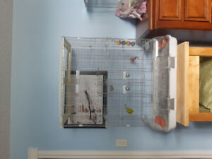 Large vision bird cage- good condition