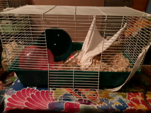 Small pet cage- plus accessories