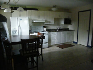 1 Bedroom FURNISHED Basement Suite for Rent - Jan 1/19