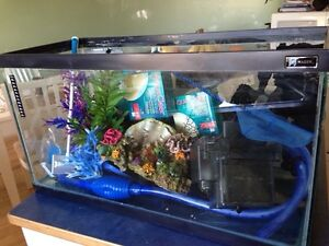 Fish tank with EVERYTHING you need !!