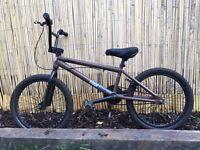 BMX Jump bike. Stolen (brand) Pinch (model)