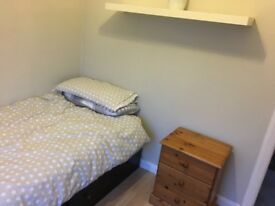Newly decorated single room in house share