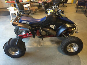 Honda 250r | Buy a New or Used ATV or Snowmobile Near Me in Alberta