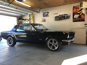 1964.5 Mustang coupe, 5.0l V8
