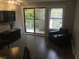 Fully Renovated 2 Bedroom 1 Bathroom Suite