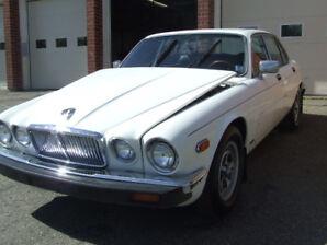 1983 Jaguar XJ6 for sale