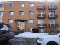 2 X Bright 1 BDR APTS for rent in VSL