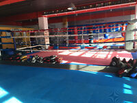 Wanted Boxing coach, freelance!