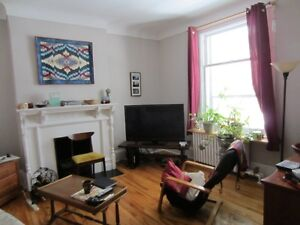 SANDY HILL-PROFESSIONAL-GRAD.STUDENT-2 bed.apt-QUIET,CLEAN,NICE