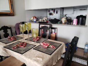Female Roommate Wanted - Fully Furnished Room in Condo Building