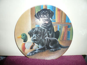 Collectible Plate - Dogs