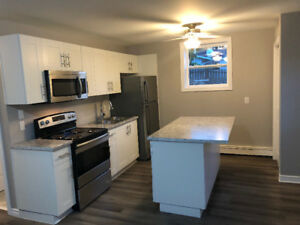 Two bedroom renovated apartment for rent available immediately