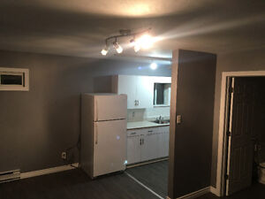 Renovated Apartment for rent in belwood Kitchener / Waterloo Kitchener Area image 2