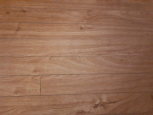 ENVY natural Oak laminate