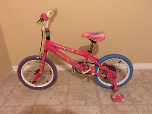 Little Missed Matched Bike