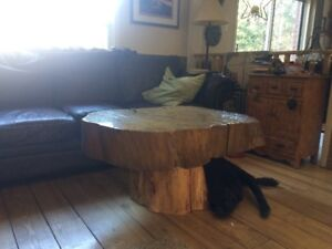 Rustic Tree stump Tables