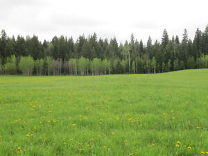 Property for sale Prince George British Columbia image 10