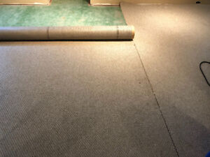 Carpet, to give away