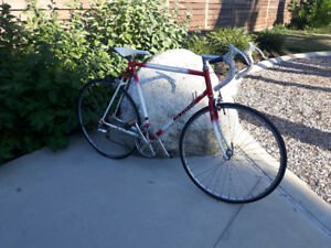 "22"" Old Vintage NISHIKI  ""LINEAR"" Road Bike (light f)"