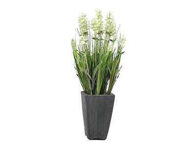 Europalms Lavendel, cremefarben, im Dekotopf, 45cm - Kunstpflanze ()