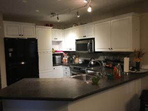 Room for rent in Sherwood Park
