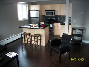 cosy downtown exec style fully equipped condo -available 28 Jan