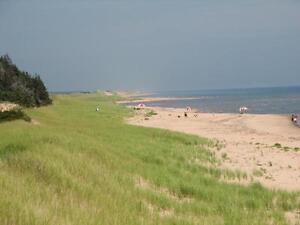 BEST BEACH IN CANADA FOR SALE - BASIN HEAD