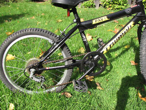 Kids Triumph Rave bike i, very nice condition. 4-5 years and up London Ontario image 4
