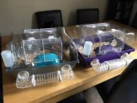 2 Robroski dwarf hamsters plus cages and food