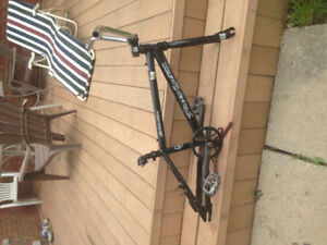 BMX Freeagent frame(dirt)