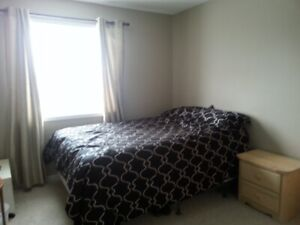 fully furnished bedroom available immediately