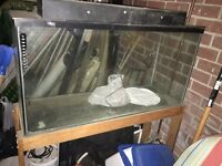 Large terrarium with stand for sale - $75