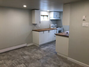 1 bedroom 3 1/2 apartmnt on quiet NDG street. Newly renovated.