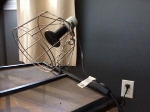 Kit de Lampe en Céramique pour Terrarium Exo Terra