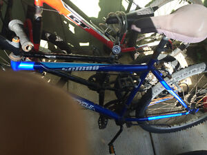 18 speed mountain bike for sale!