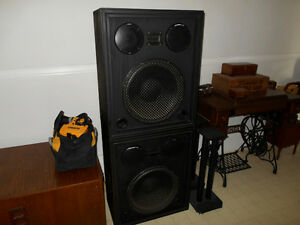 Really big, really cool, really loud hand-built speakers.