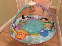 Fisher price, jungle gym play mat