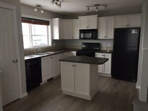 Newly renovated house in Summerwood Strathcona County Edmonton Area image 2