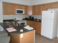 1 Bedroom Sublet for 2100.00 per month to July 31 - Timberlea