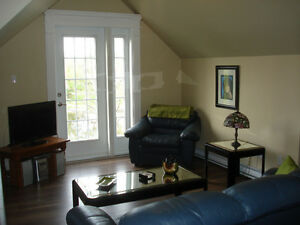 Cathedral Loft Condo - Kitchen In-suite Laundry- January 1, 2016