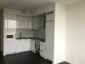 Downtown Brand New 1+1 -bedroom suite for rent by the owner