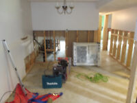 Mold and water damage Removal