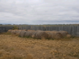 About 24 bales